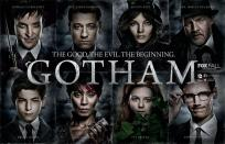Blog Post 1 - gotham
